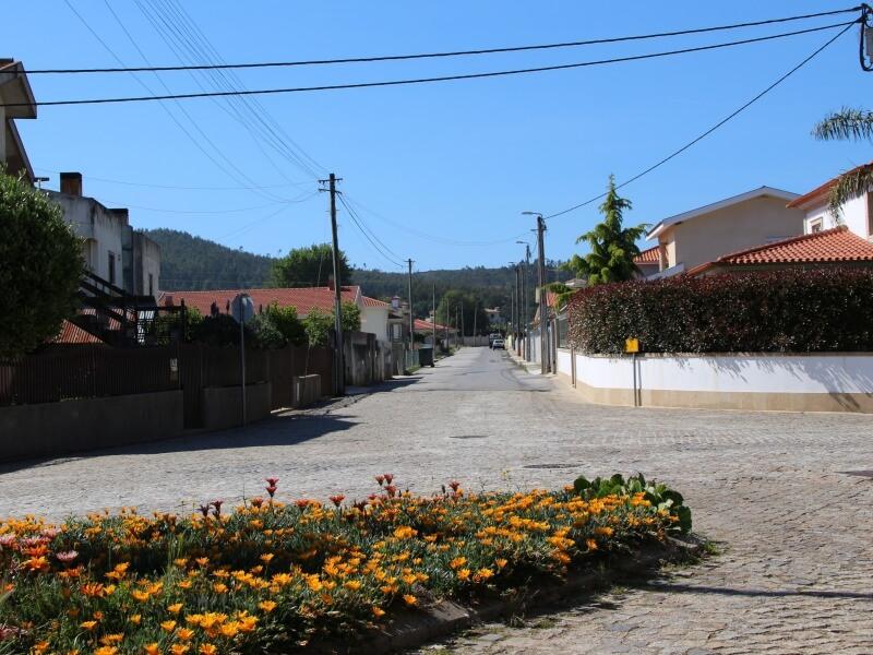 Censos 2021: Água Longa é a única freguesia do concelho a registar um aumento demográfico